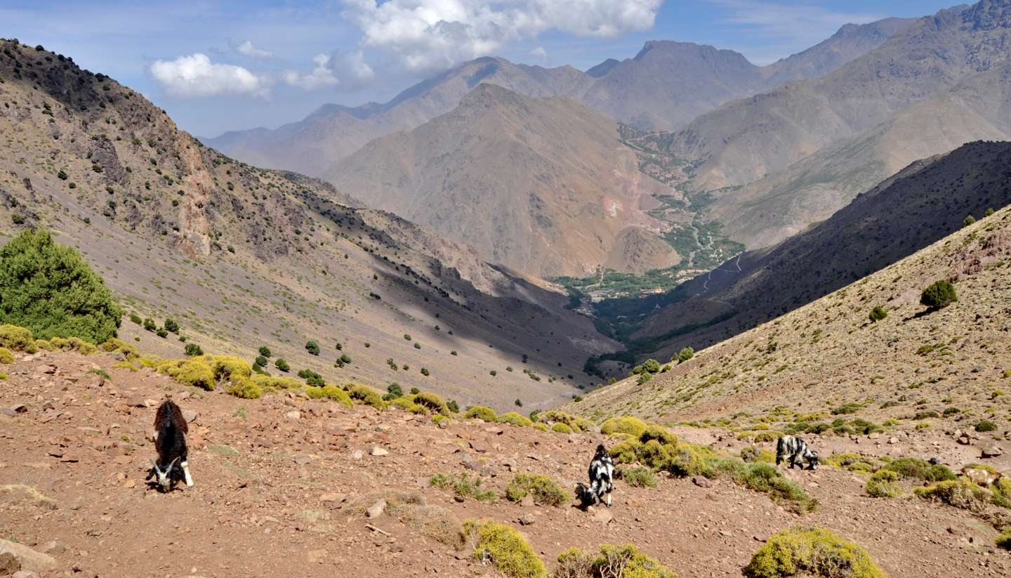 Marruecos - trekking morocco's high atlas mountains