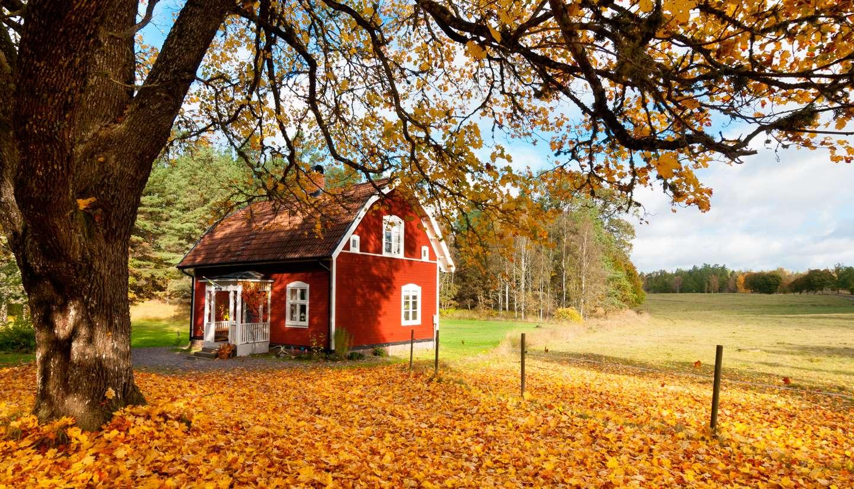 Suecia - Sweden in Autumn