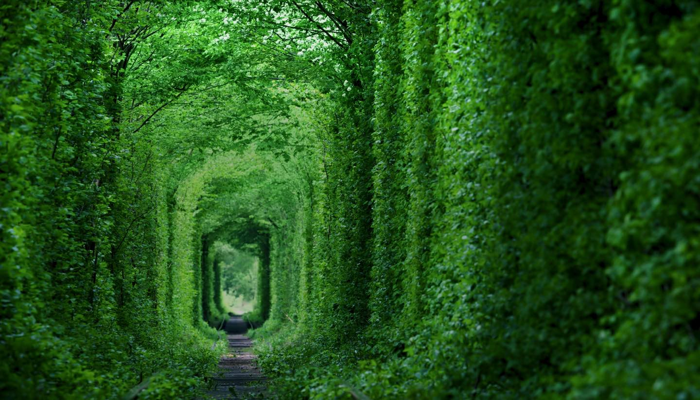 Ucrania - Tunnel of Love, Ukraine
