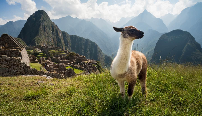Perú - Machu Picchu, Peru