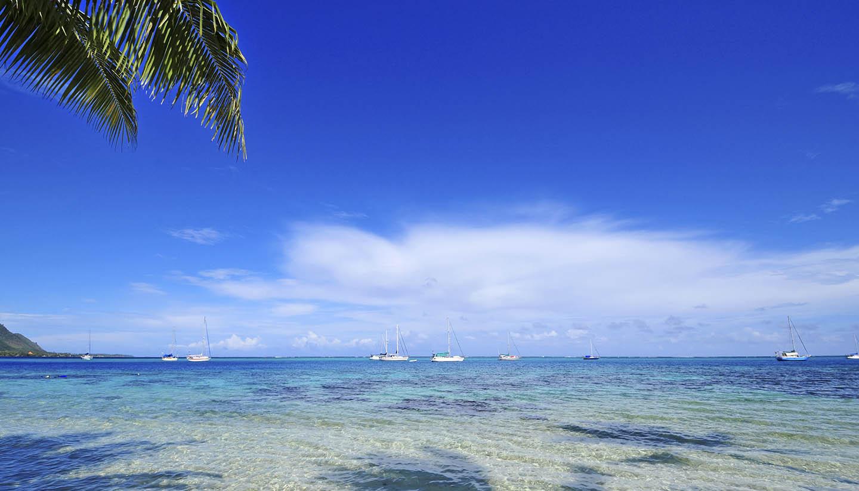 Tahití y la Polinesia Francesa - Island Beach, Tahiti