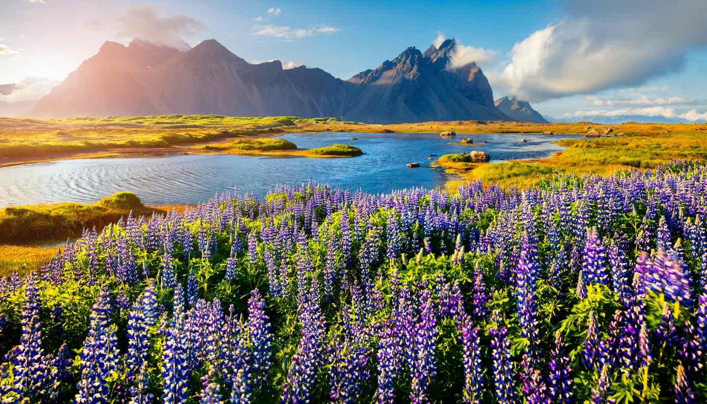 Islandia - Stokksnes, Iceland
